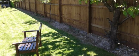Close Board fencing – Sawston